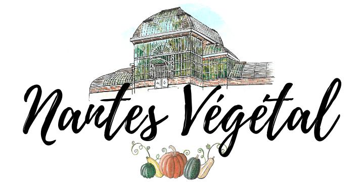 Nantes Végétal : blog de restaurants végétariens/vegans à Nantes